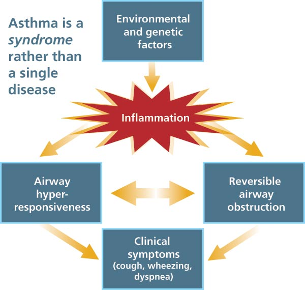 Infographic showing how severe Asthma entails symptoms that don't go away with medication