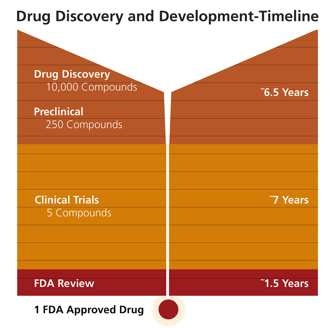 chart showing the drug development timeline for medications in the U.S.