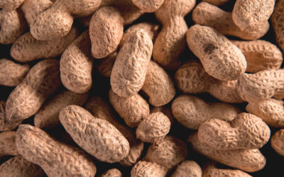 Joint Statement on Peanut Allergy Therapy Review