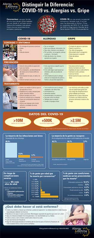 Infographic in distinguishing the difference between allergies, flu, or covid-19 Spanish edition