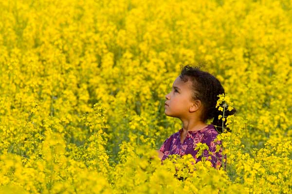 Young Black girl in a big field of yellow flowers during the spring bloom.